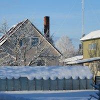 Снежною шалью укрыта тепличка :: Mariya laimite