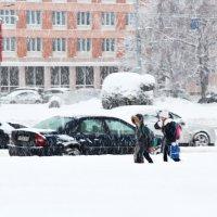 """""""Падает на всех снег"""" :: Инна Малявина"""