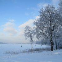 По озеру на лыжах :: Вера Щукина