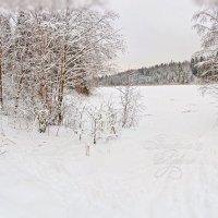 Снежная панорама :: Анастасия Белякова