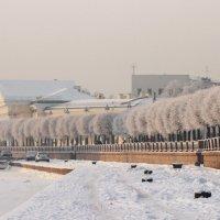Белый город :: Вера Моисеева