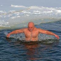 Праздник Крещения ... аки лебедь... :: Александр Бойко