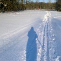Вставай на лыжи ))) :: Елена Данилычева