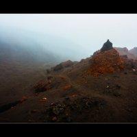 Марсианские хроники Камчатки :: алексей афанасьев