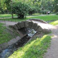 Горбатый мостик :: Вера Щукина