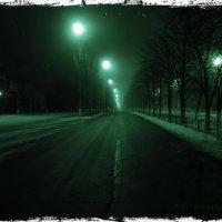 Дорога в ночь :: Igor Arabadzhy