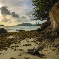 Солнце встаёт над островами :: Марина Мудрова