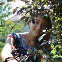 Игривая,под лучами солнца. :: Дарья