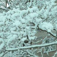 снежный город... :: Михаил Жуковский