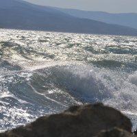 Море море... :: Елена