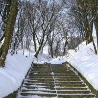 Лестница в городском саду. :: Борис Митрохин