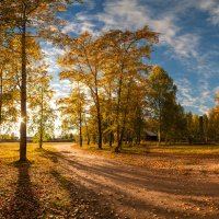 Золотая осень :: Виталий Истомин