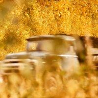 Осенний рейс :: Валерий Талашов