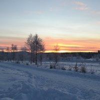 Cнежные дни :: Ольга