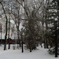 Иней в городе ... :: Игорь Малахов