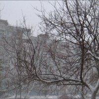 Снег идёт... :: Нина Корешкова