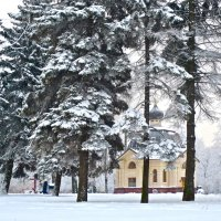 зимой :: Елена