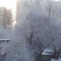 Зима :: Мария Владимирова