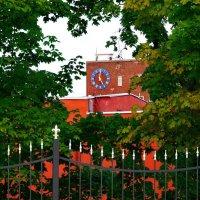 Часы. :: mishel astoria