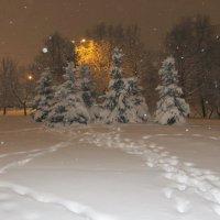 Снежный январь! :: Ирина Олехнович
