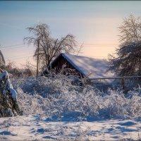 Зима в деревне :: Елена Ерошевич