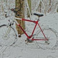 мой снегоход :: Михаил Жуковский