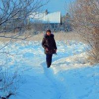 Зимняя прогулка :: veera (veerra)