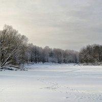 Зима на Смоленщине 2016 :: Милешкин Владимир Алексеевич