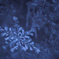Хрустальная снежинка :: Максим Никитенков
