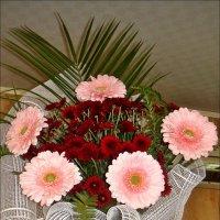 Герберы и хризантемы в букете :: Нина Корешкова