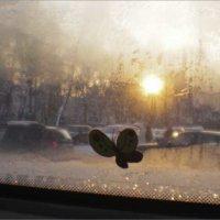 Автобусное окно :: galina bronnikova