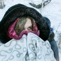 Тепло, батюшка, тепло... (Продолжение комментария предыдущей фотографии) :: Александр Рейтер