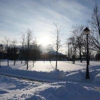 Морозный денек :: Лариса Корженевская