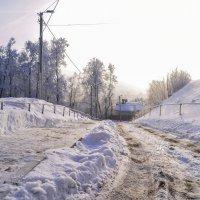 Зимнее утро :: Дарья Киселева