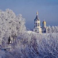 Иней во Владимире :: Дарья Киселева