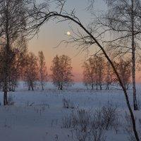 Цыганское солнце :: Николай Мальцев