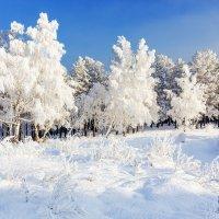 В царстве снежной королевы :: Анатолий Иргл