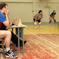 Волейболистки :: Валерий Чепкасов