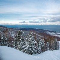 Зимний пейзаж :: Андрей Шаронов