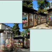 Прогулки по Краснодару :: Нина Бутко