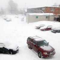 Снегопад :: Геннадий Храмцов