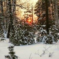 Зимний закат перед морозом. :: Александр Тулупов