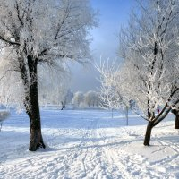 Муринский парк :: Елена Грошева