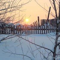 Морозным утром. :: Николай Масляев
