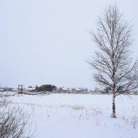 Зима :: Светлана Ку