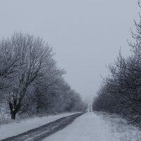 Даже сквозь туман и холод иди к тому, кто зажёг для тебя огонёк любви :: Алеся Пушнякова