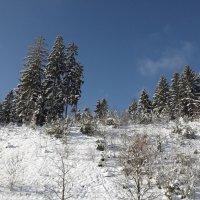 Зима.. :: Эдвард Фогель