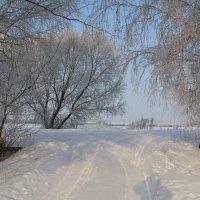 Зима, Лопандино... :: Владимир Холодницкий