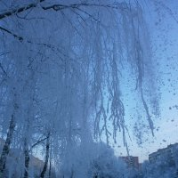 Зима в моём городе... :: Алёна Савина