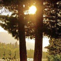 Солнце на Катуни :: юрий Амосов